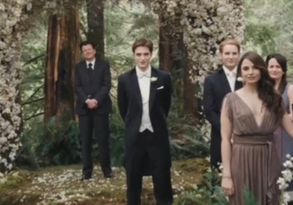 Dallas Wedding Planner, Dallas Party Planner, Twilight Saga, Breaking Dawn, Cullen Wedding, Edward Cullen