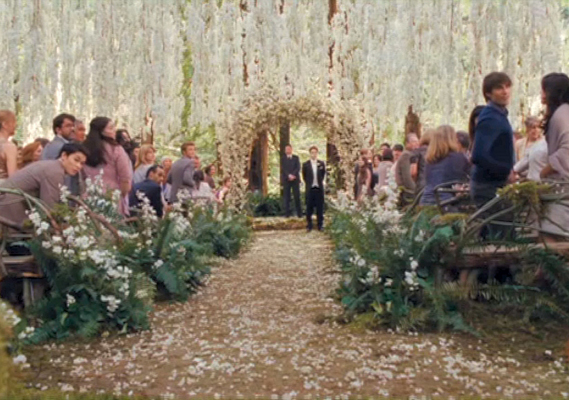 Dallas Wedding Planner, Dallas Party Planner, Twilight Saga, Breaking Dawn, Cullen Wedding, Cullen Ceremony