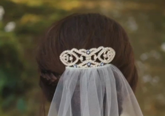 Dallas Wedding Planner, Dallas Party Planner, Twilight Saga, Breaking Dawn, Cullen Wedding, Bella's Hair Clip
